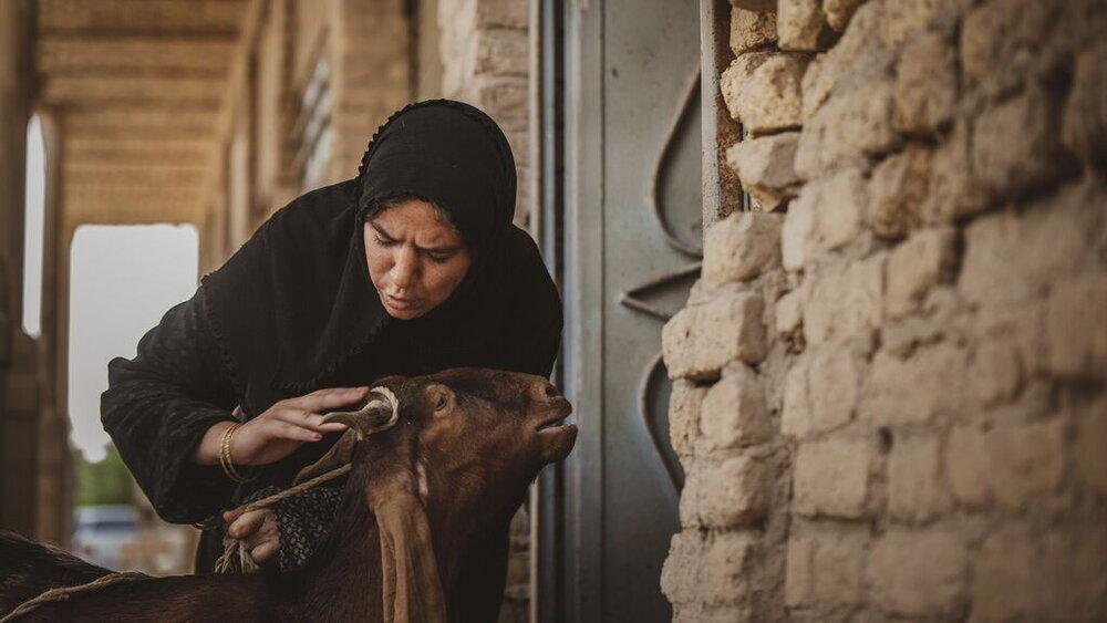 مشهدیعباس: موفقیت «یدو»، دستاوردی برای سینمای کودک و نوجوان است