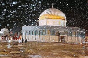 ببینید   بارش برف زیبایی که مسجد الاقصی را سفید پوش کرد