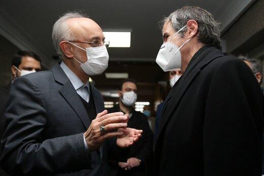 مدير عام الوكالة الدولية للطاقة الذرية یلتقي صالحي