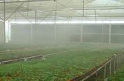 لوازمه مه پاش مناسب را از کجا میتواند خریداری کرد؟