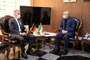 دیدار سفیر آلمان با صالحی