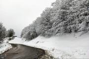 تصاویر | طبیعت برفی مسیر سیاهکل به دیلمان