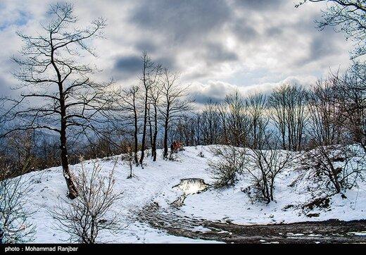 ورود سامانه جدید بارشی به کشور؛ برف و باران در ۲۰ استان