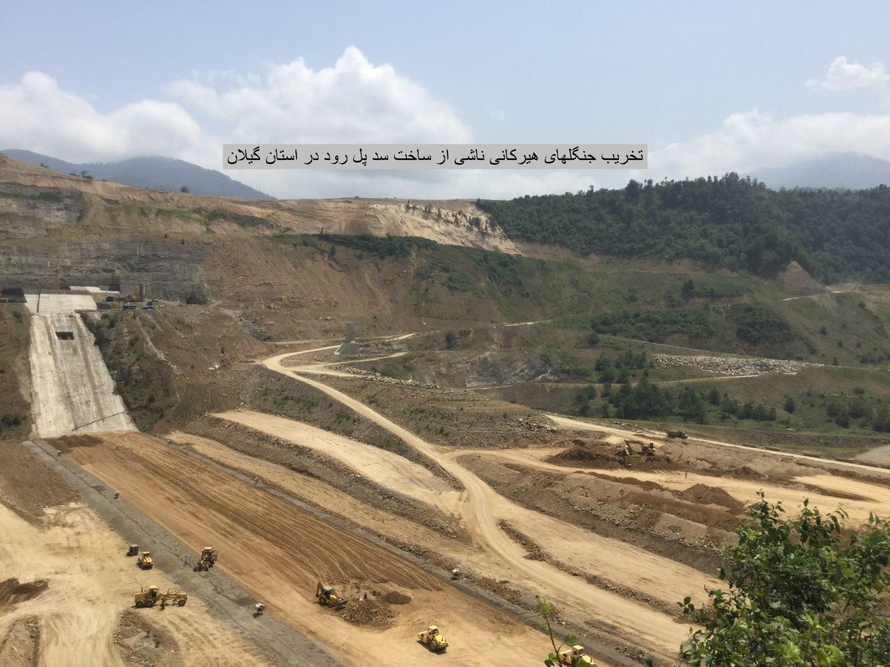 روایتی از تخریب دهها ساله جنگلهای ایران