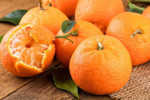 چرایی گرانی نارنگی در بازار