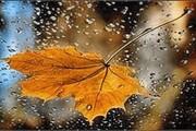 همدان از بعد از ظهر امروز بارانی است