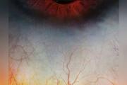 عکس | چشم انسان از نمای نزدیک