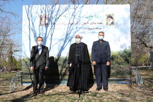 روحانی:حفظ وگسترش درختان و مراتع به معنای امنیت غذایی و ملی است