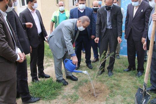 اقدامات موفق خوزستان برای بیابان زدایی در سالهای اخیر