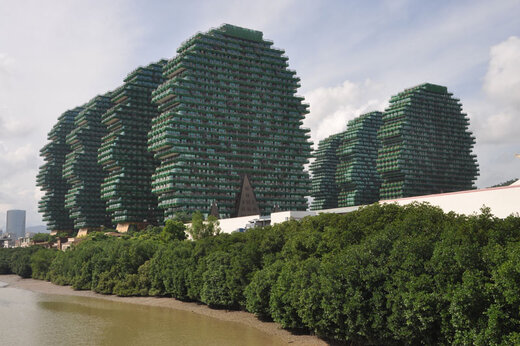 ببینید | درختان خانه در جزیره هاینان در چین