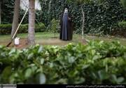 تصویری از رهبر انقلاب درحال درختکاری در حیاط بیت