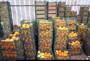 فروش مستقیم میوه توسط باغداران برای حذف دلالان / حل مشکل روغن تا پایان سال