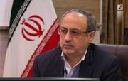 رئیس شورای شهر همدان: قطع درخت به صورت غیرمجاز خلاف قانون است