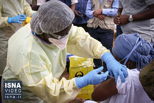 ببینید | شیوع ویروس دیگر در جهان
