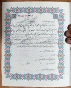 ببینید | غرس ۱۰۰ نهال در کویر آران و بیدگل، مهریه بانوی تهرانی