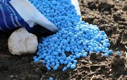 ۴۲هزار تن کود شیمیایی در قزوین توزیع شد