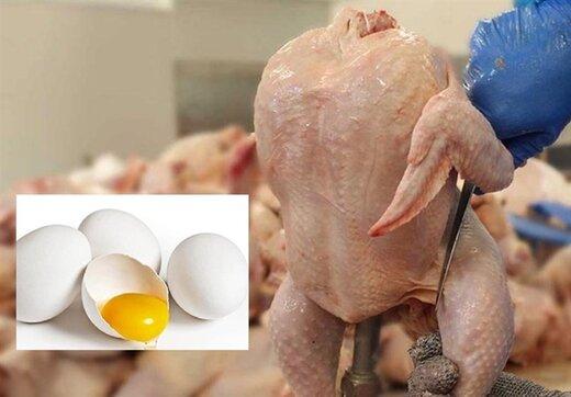 بازار مرغ و تخممرغ روی آرامش را میبیند؟