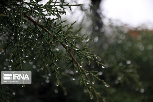 شروع بارشها در ایران/ رعدوبرق به همراه باد شدید میآید