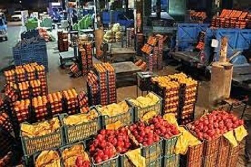 انواع میوه در بازار چند قیمت خوردند؟