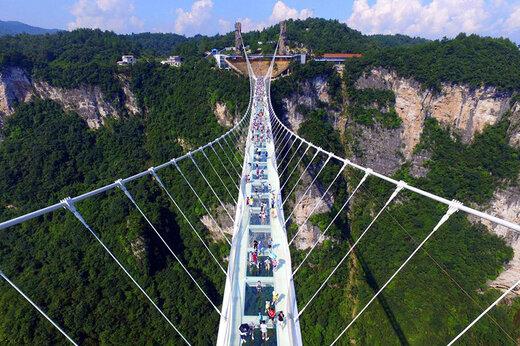 ببینید | ساخت پل شیشهای ۱۰۰متری توسط چینی ها