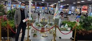 ادامه جشنواره فروش ویژه در هایپرمی تا ١۵ فروردینماه