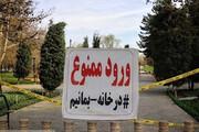ببینید | جریمه برای توقف خودرو مقابل بوستانها