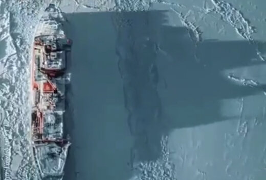 ببینید | بزرگترین کشتیهای اتمی یخشکن و قطب نورد جهان
