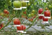 ببینید   آینده صنعت کشاورزی در اختیار هوش مصنوعی و پهپادها