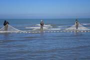 ببینید | صید غیرمجاز در رودخانههای مازندران ماهیهای دریایخزر را کاهش میدهد