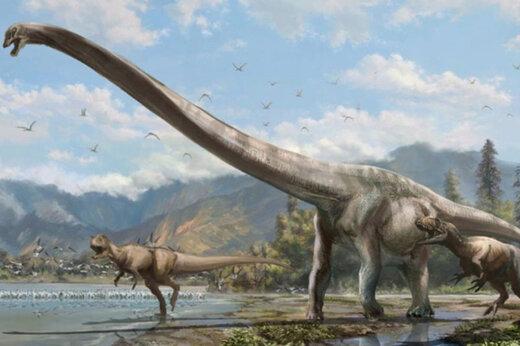 ببینید |  کشف نمونههایی از دایناسورها در شیلی