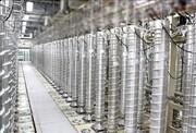 ادعای گزارش اطلاعاتی آمریکا درباره برنامه هستهای ایران