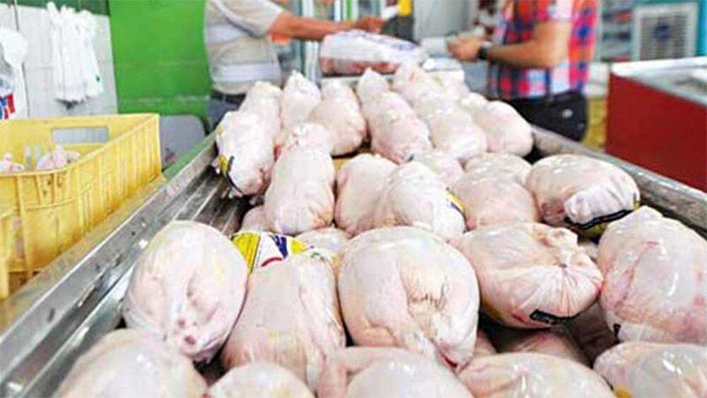 فروش مجدد مرغ قطعه بندی از امروز / توزیع گسترده مرغ با نرخ مصوب