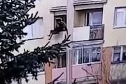 ببینید | قتل در روز روشن؛ پرتاب مادربزرگ از پنجره!