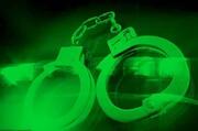 دستگیری دونفر متخلف توسط یگان حفاظت محیط زیست در چهارمحال و بختیاری