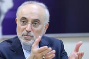 صالحی از جزئیات برنامه ایران برای تولید برق هستهای گفت