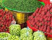 ریزش قیمت نوبرانههای بهاری؛ به زودی/ وضعیت نامناسب میوه های دپو شده در سردخانه ها