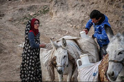 ببینید | انتقال آب با الاغ توسط روستائیان شرق خوزستان