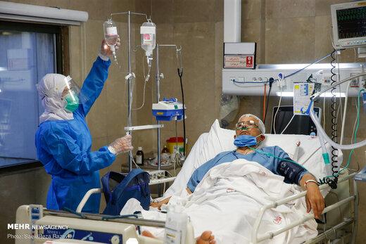 معاون وزیر بهداشت: روند بستری بیماران کرونایی ثابت و آرام شد