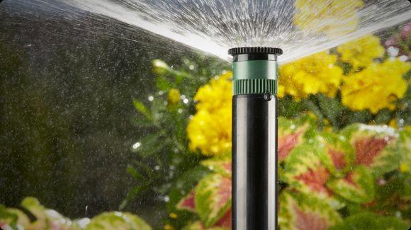 ضرورت استفاده از تایمر آبیاری خانگی چیست؟