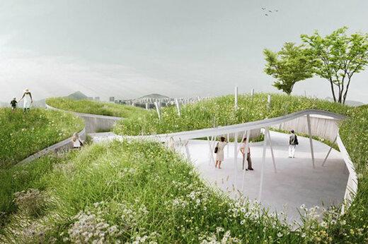 ببینید   فضای سبز یک میدان در چین