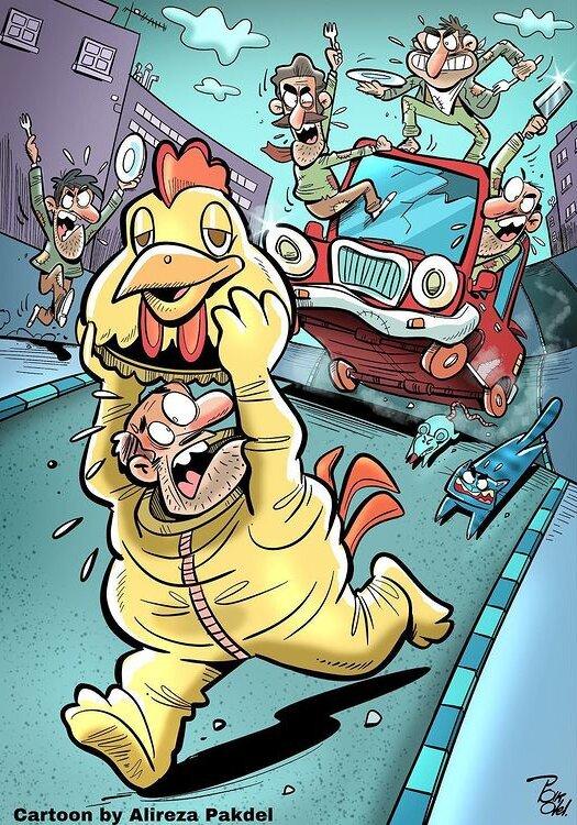 ببینید: گرانی مرغ و این شغل پر خطر!