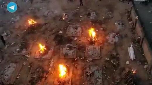 ببینید | تصاویر هوایی وحشتناک از سوزاندن اجساد بیماران کرونایی در هند