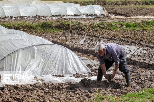 خشکسالی در پربارانترین استان کشور
