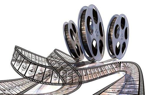 استقبال مستندسازها از مصوبه دولت