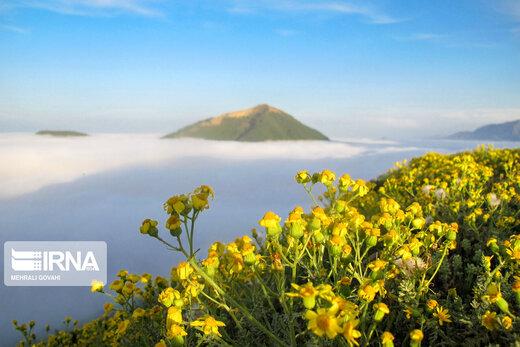 زیبایی های طبیعت در ییلاقات رضوانشهر