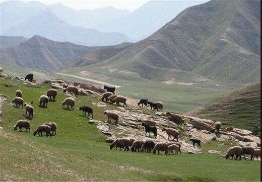 در مراتع استان یکهزار و ۲۵۲ هکتار سامانه عرفی بهرهبرداری وجود دارد
