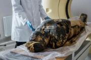 ببینید   شگفتی محققان از یافتن جنین در مومیایی ۲ هزار ساله