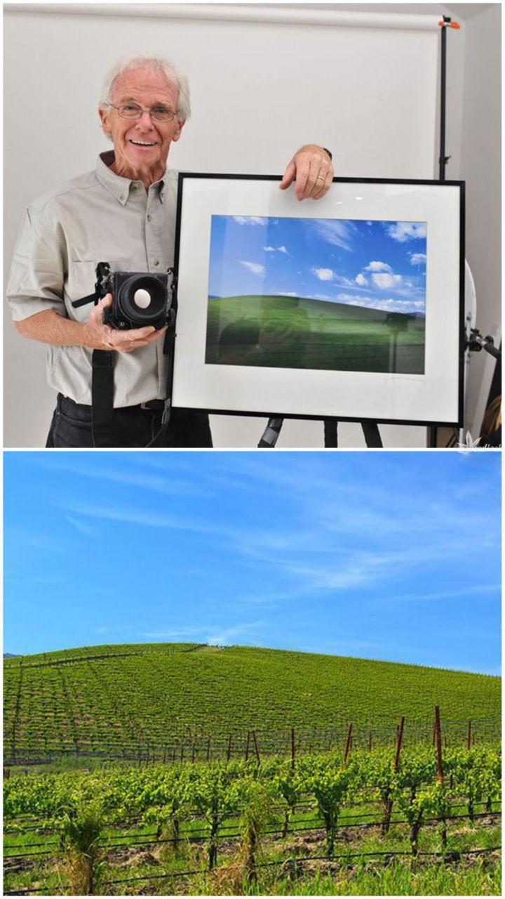 عکس | تبدیل عکس معروف بکگراند ویندوز XP به زمین زراعی!