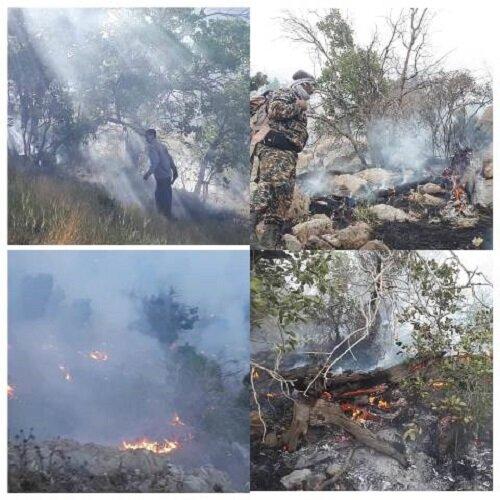 آتش سوزی منطقه حفاظت شده کوه دیل گچساران مهار شد