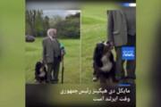 ببینید | شیطنت سگ و صبر رئیسجمهوری ایرلند